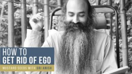 How to get rid of Ego?